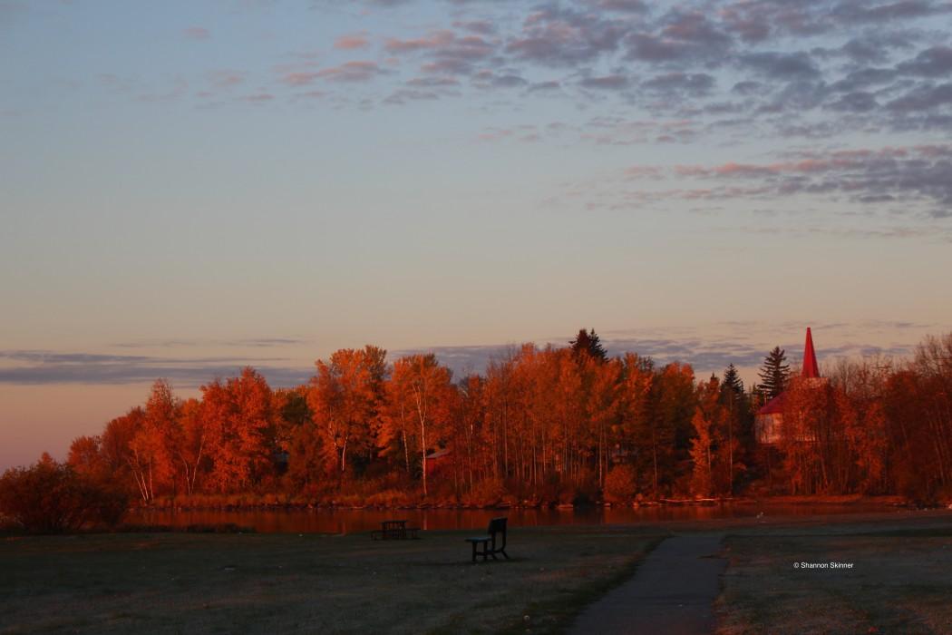 La Ronge trees sunrise