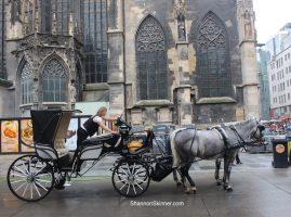 Vienna, Austria, St Stephens Church