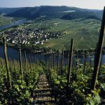 Mosel wine region, Moselle River, Germany